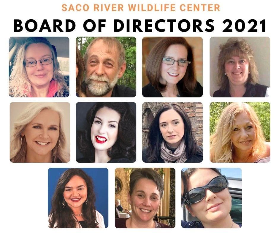 Saco River Wildlife Center Board of Directors 2021
